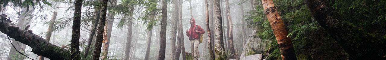 Reconnecter avec la nature | Blogue | Domicil